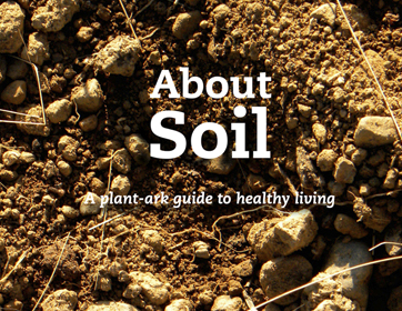 All about soil!
